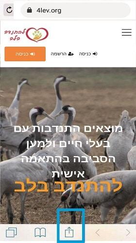 הוספת קיצור דרך לאתר להתנדב בלב - התנדבות עם בעלי חיים. אייפון שלב 1