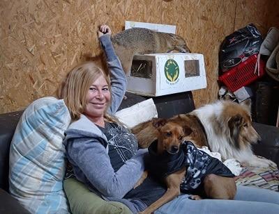 אפשר לפגוש בעלי חיים רבים בהתנדבות - כלבים, חיות בר שונות, ציפורים